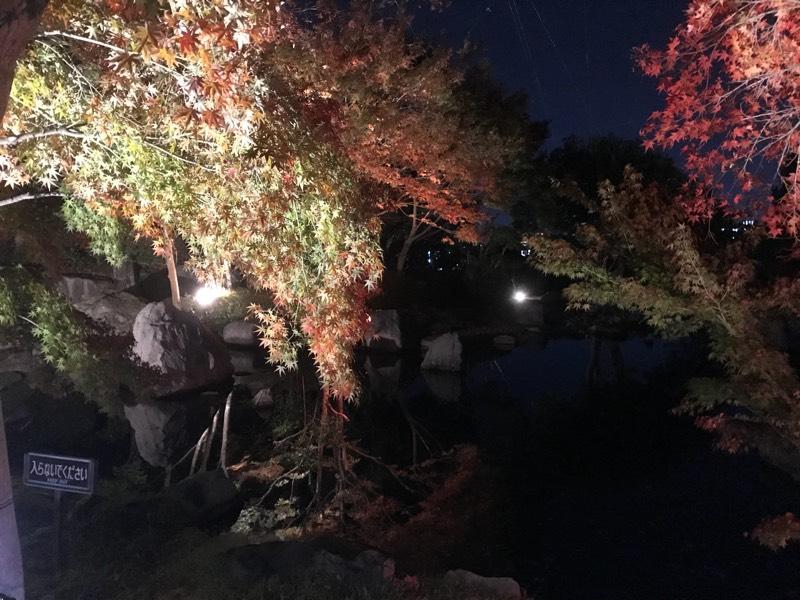 二ノ丸史跡庭園ライトアップ