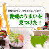 エヒメグルメガイド〔愛媛全域のグルメ、美味しいものをご紹介〕愛媛のご当地料理や郷